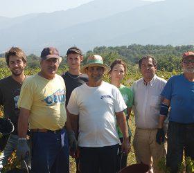 Team vendangeurs 2014